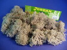 Jordan ISLANDMOOS grau GROßPACKUNG mit 80g              67A