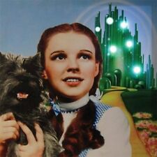 The Wizard of Oz Dorothy 15 x 15 Lighted Stretched Canvas Wall Art, NEW BOXED