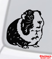 GUINEA PIG Vinyl Decal Sticker Car Window Funny Pet Love Animal Cute Cavy Rodent