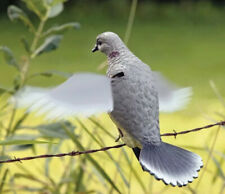 Lucky Duck Rapid Flyer Dove Decoy *Brand New -Nib