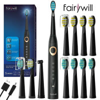 Electric Toothbrush Rechargeable 12 Brush Head Powerful Sonic Cleaning Fairywill
