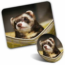 Mouse Mat & Coaster Set - Ferret Hammock Pet Rodent Animal #16329