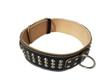 Beautiful Heavy Duty Black Leather Dog Collar with Studded Design