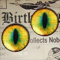 Yellow Dragon Eyes Realistic Glass Taxidermy Eyeball 16mm Set