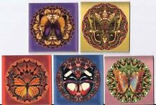"""10 altered butterfly mandala 2"""" cards blank with envelopes and organza bag"""
