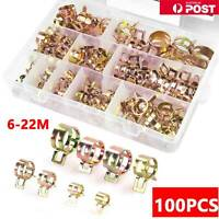 100pcs Stainless Steel Spring Clip Hose Clamps 6-22mm Adjustable Range Worm Gear