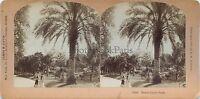 Monaco Montecarlo Stereo Vintage Albume D'Uovo