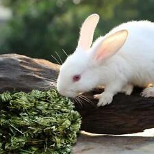 4 Stück Kaninchen Kauball Timothy Grass Schleifen Kleintier Aktivität Spielzeug