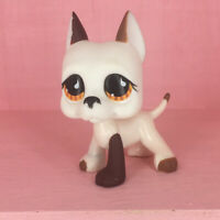 LPS 750 Littlest Pet Shop toys Orange Eyes Great Dane Dog White Brown Puppy New