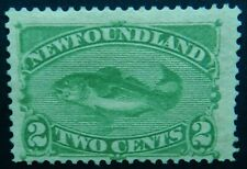 Newfoundland Canada 1882 2c  SG 46 Unused No Gum cat £60