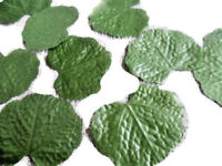 100 GREEN SHAPED SILK  LEAVES/COSTUMES/DECOR/WEDDINGS/PROJECTS/HOBBIE/CRAFT