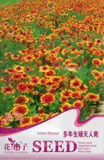 New listing 30 Indian Blanket Seeds Per Pack Gaillardia Aristata Beautiful Flower Seed A300