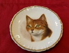 "Lovely Vtg. Kitty Cat Plate for the Feline Enthusiasts Lovers - 8 1/2"" (1119)"