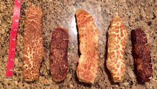5 Pcs FRESH Himalayan Dog Chew Bulk PUFF LARGE Treat Bone Cheese GENUINE Yak