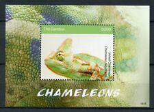 Gambia 2018 MNH Chameleons Veiled Chameleon 1v S/S Lizards Reptiles Stamps