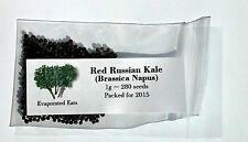 280 Red Russian Kale Seeds All Natural Non GMO Freshly Packed For 2017