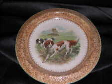More details for antique dog plate irish red white setter english 1870