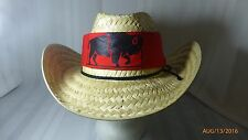 Childrens Straw Cowboy Hat Western Wear Bandana Buffalo Custer Halloween Costume