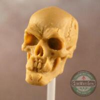 "MUC022 Orc Ork Skull custom sculpt cast use w/7"" MotUC Mythic Legions"