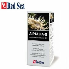 Red Sea Aiptasia-X 60 ml gegen Glasrosen Aiptasia Majanos