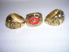 RED WINGS STANLEY CUP Championship NHL Hockey RING Detroit New