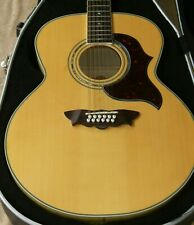 Washburn J28S12DL, 12-string Cumberland jumbo acoustic guitar, with hard case