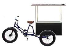 Electric Cargo Fat Bike Solar Power 3 Wheel Electric Motor Bike