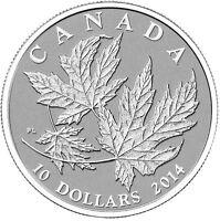 18393 2018 /'Maple Leaves/' Specimen $10 Silver Coin 1//2oz .9999 Fine