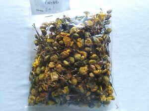 Ranawara Dried Flower Natural Ayurvedic Herbal Drink 50g Ceylon 100% Organic
