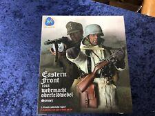 "DID WWII ""Cross of Iron"" Wehrmacht Oberfeldwebel ""Steiner"" Eastern Front 1943"