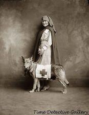 WWI Red Cross Nurse with Rescue Dog - circa 1915 - Historic Photo Print