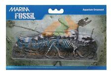 Marina Aquarium Ornament Fossil Stegosaurus