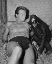 Lex Barker - Tarzan and the She-Devil (1953)  - 8 1/2 X 11