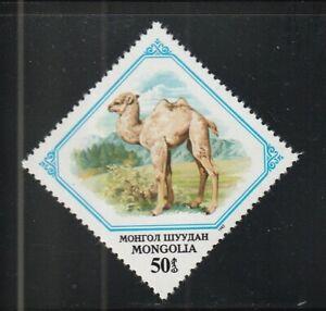 Camel, Dromedary,