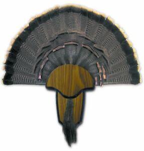 Turkey Tail Fan Mount Kit Trophy Strut Woodgrain Finish Plaque Mounting Hunting
