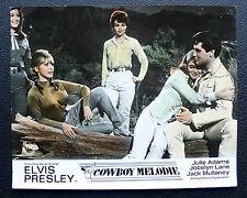 Elvis Presley - Cowboy Melodie - Original Kino EA Aushangfoto 1965