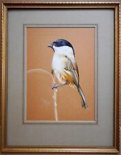 Willow Mésange. Original gouache par Sheffield Bird artiste Joan Parsons, 1976