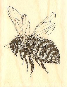 Bee Flying Wood Mounted Rubber Stamp IMPRESSION OBSESSION A1493 New