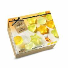 House of Crafts Soap Making Lemon Scented Starter Craft Kit (SC020)