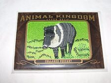 2013 Goodwin Champions Animal Kingdom COLLARED PECCARY #AK204 Patch Javelina SP