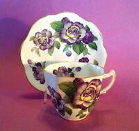 Rosina Teacup And Saucer - Scalloped Rims - Purple Roses - Bone China - England