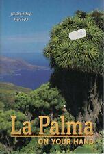La Palma on your hand-Juan Jose Santos