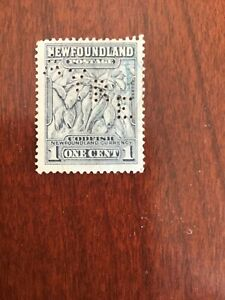 """Newfoundland - Canada 1 cent Perfin AYRE used stamp """"COD FISH"""" VG Lot 9943"""