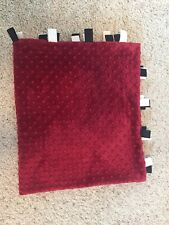 Minky Dot Baby Blanket  31x35 Inches
