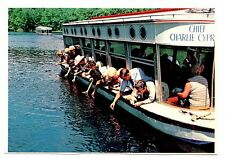 Florida's Silver Springs Postcard Feeding Fish by Hand Chief Charlie Boat Cypres