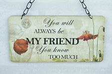 Wall Plaque You Will Always Be My Friend You know To Much Sign 22cm  SG1247