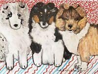 Triple Threat Sheltie Puppies Original Pastel Painting 9x12 by KSams Collie Art
