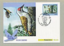 PICCHIO CENERINO CARTOLINA FILATELICA 2013 - MAXI CARD