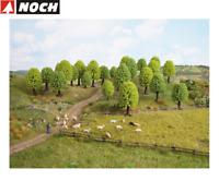 NOCH 26801 Laubbäume, 5 - 9 cm hoch (25 Stück) - NEU + OVP