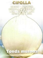 VEGETABLE  ONION TONDA MUSONA  4.5 GRAM  APPROX 1300 ITALIAN SEEDS